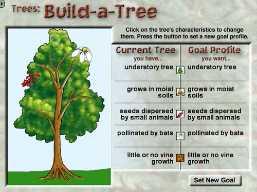 Students learn interactively through activities like Build-a-Tree