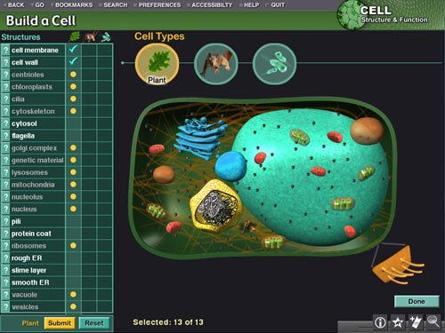 Build a Cell section