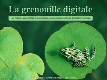 La grenouille digitale - Annual Subscription (Educational)